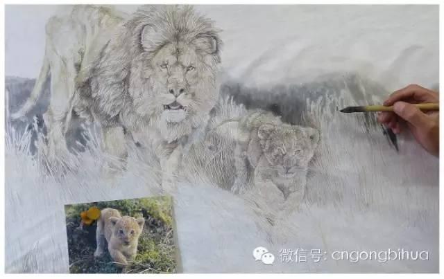 现代新工笔画动物【狮子】绘画技法步骤解析.