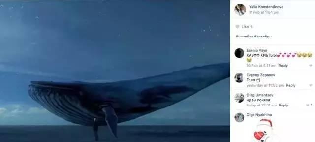 蓝鲸游戏 遇上中国网民
