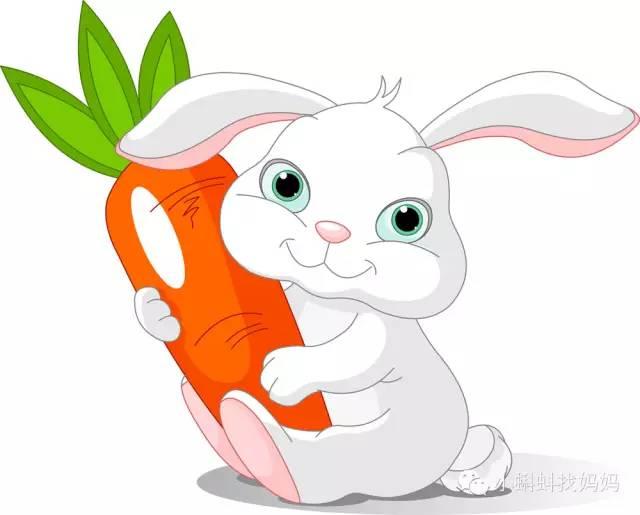 兔子卡通森林手绘