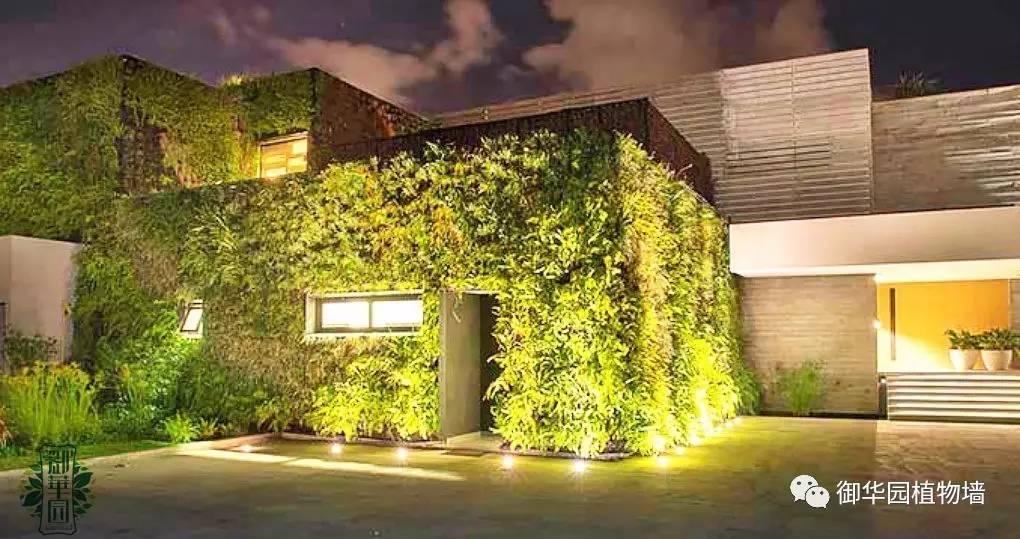 室外植物墙照明设计,点亮黑夜里的景观!