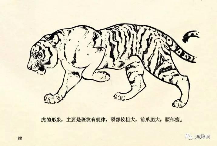 连环画大师刘继卣的《怎样画动物讲座》