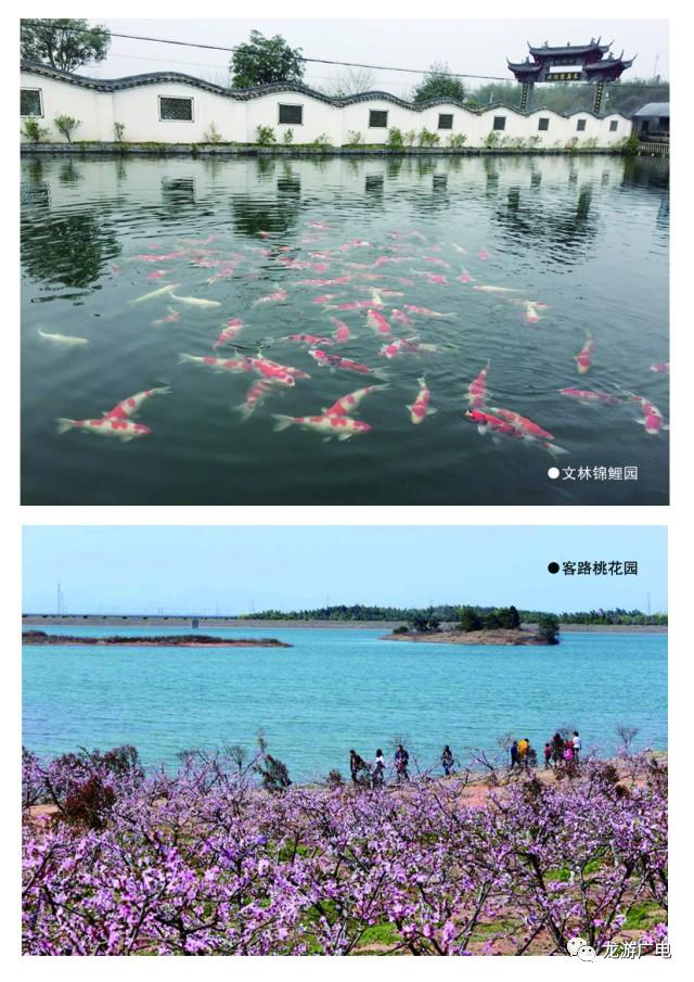 千岛湖镇等9个重点生态功能区县城的《小城市培育试点三年(2017—2019