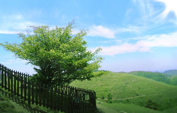百里荒――没有夏季的南方草原