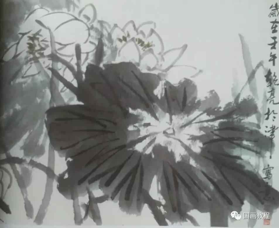 【国画教程】7集,荷花的步骤画法(7)