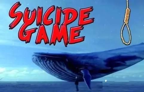 蓝鲸 死亡游戏传入中国 家长需提高警惕