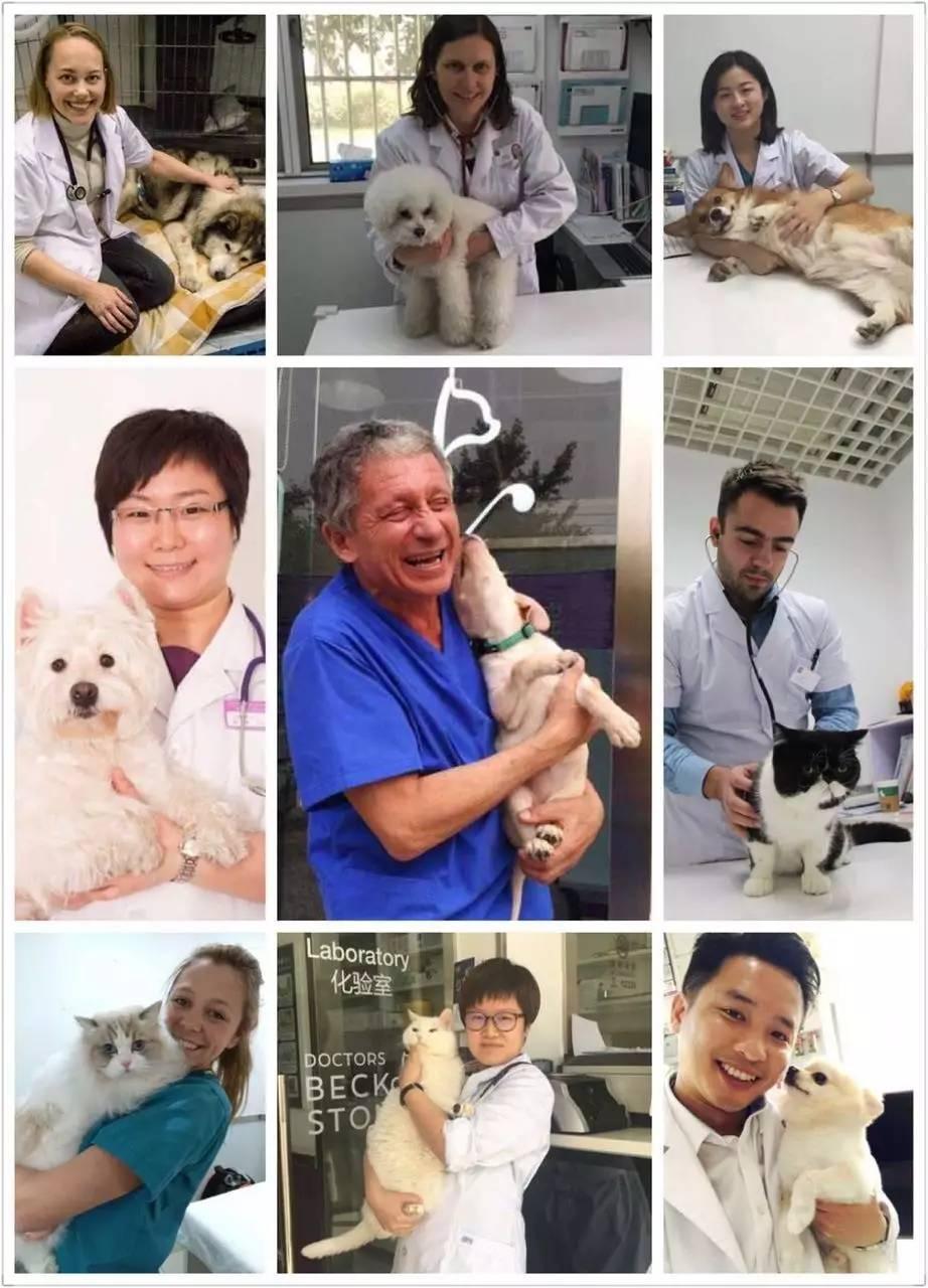 分享你与爱宠的故事 | 贝克和史东动物医院