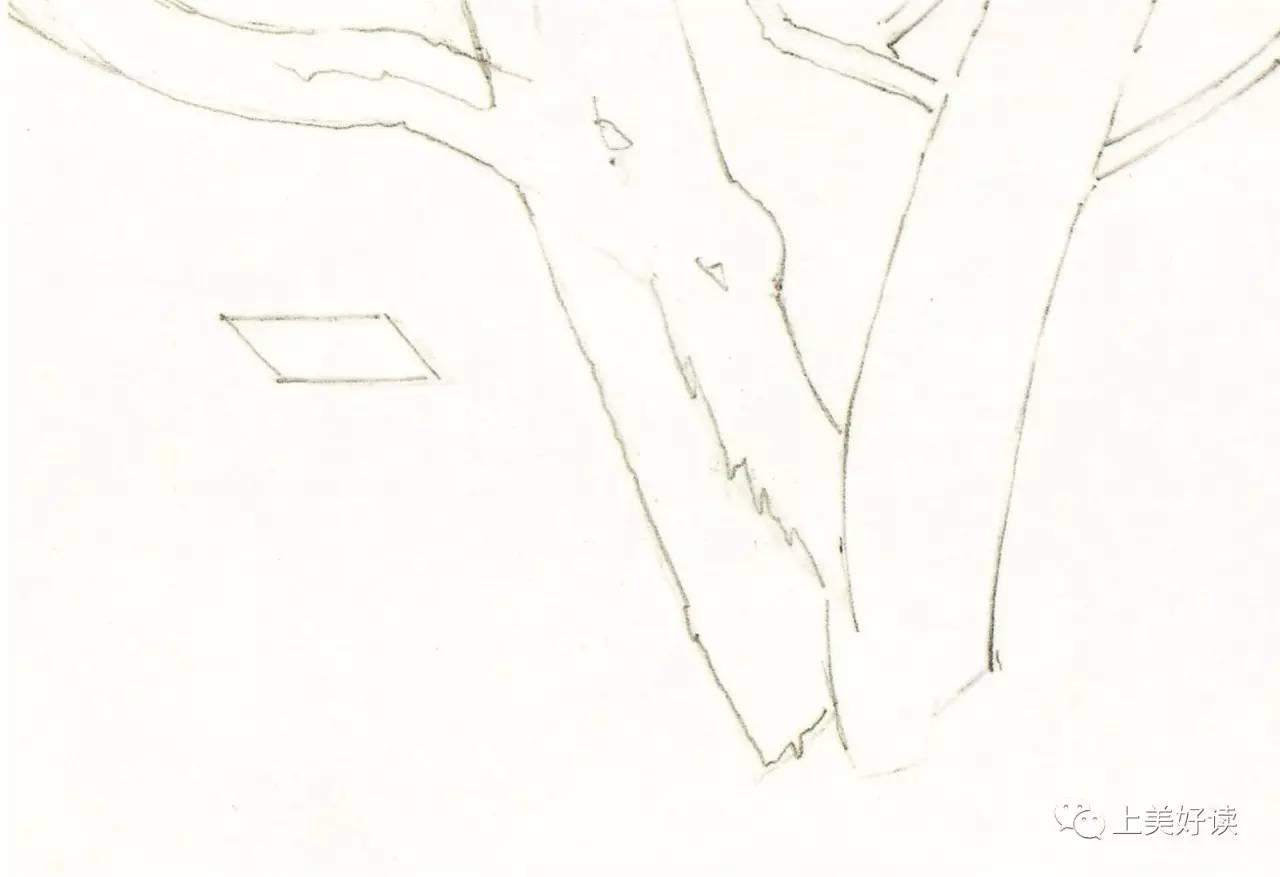 树木简笔画铅笔手绘