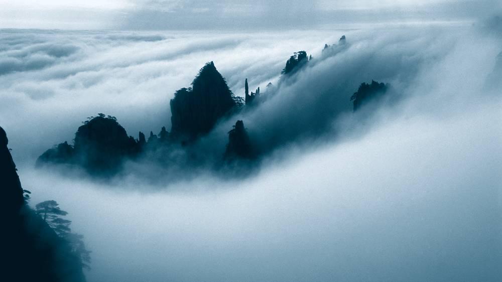 ,奏响了一首首森林交响曲   烟雨黄山