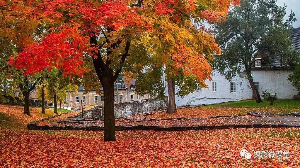 """旅游 正文  加拿大,素有""""枫叶之国""""的美誉,境内难以计数的奇观美景图片"""