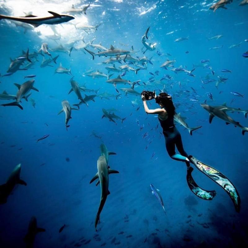 旅游 正文  lofter:偏执羊 石螺口海滩也是涠洲岛上最佳的潜水基地