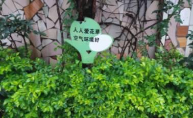 校园环境中文化宣传展板围绕操场四周,与花坛融为一体,生机勃勃,虽然