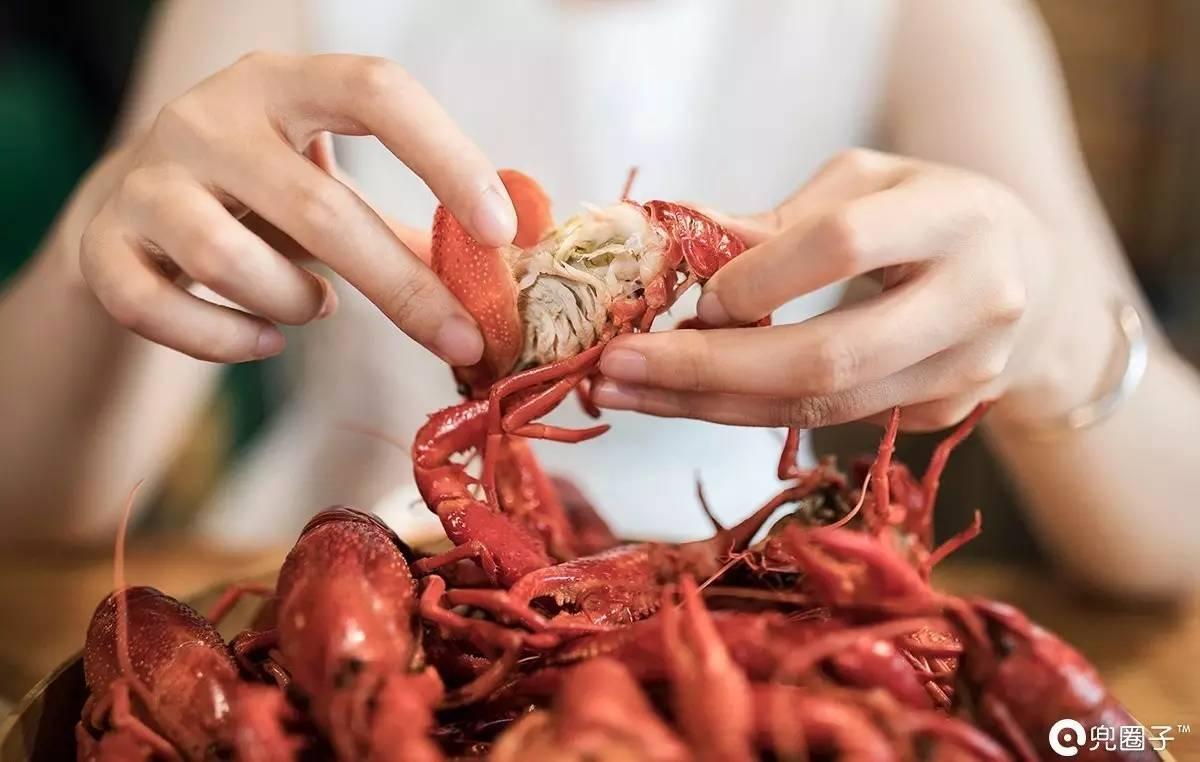 132岁老龙虾放生 龙虾的寿命有多长!(组图)_手机搜狐网