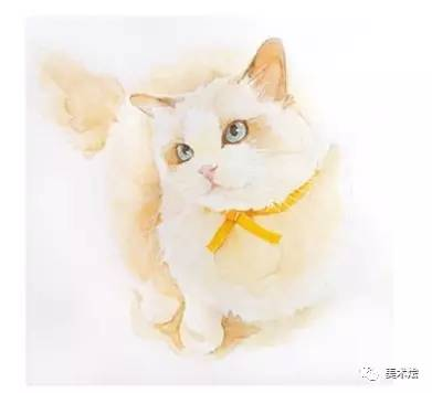 丙烯画动物猫简单