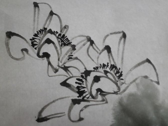 手绘线条画荷叶