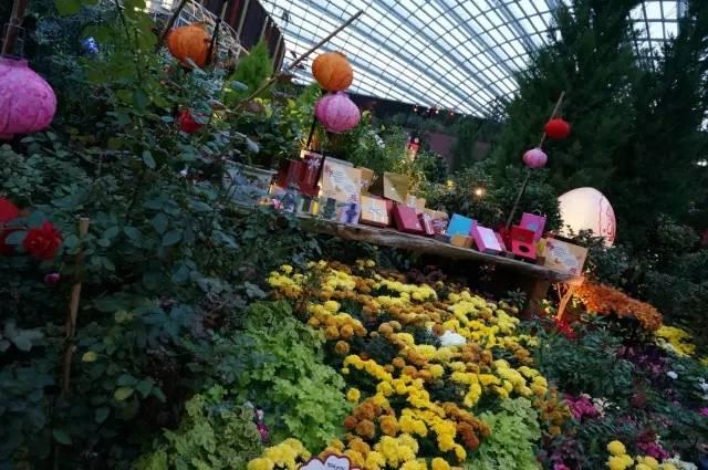 期待!太原植物园拆迁进行中,40余种濒危珍稀植物成最大亮点