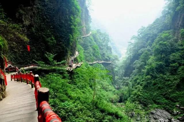 吃:金佛山特色方竹笋宴 神龙峡游景区,位于重庆西南部南川区南平镇内