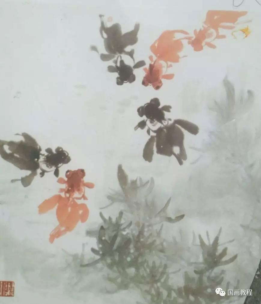 【花鸟教程】金鱼的步骤画法