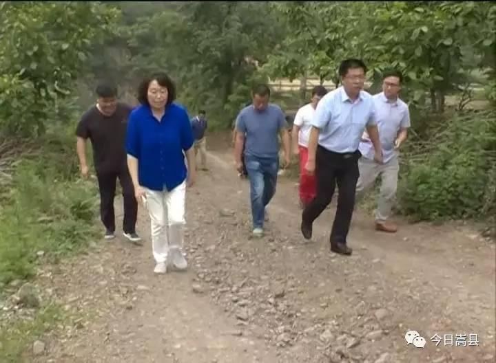 牡丹区大闫庄规划图