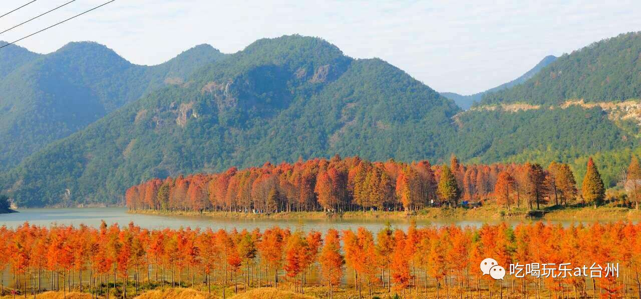 台州才拥有的那些美丽风景,美美美美翻了.