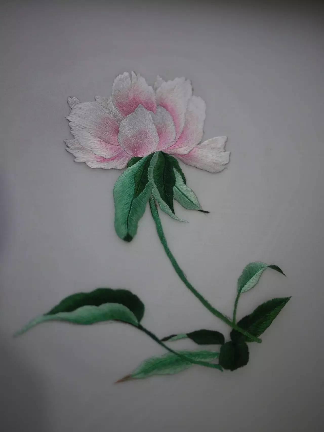 花与鸟古风扇子手绘