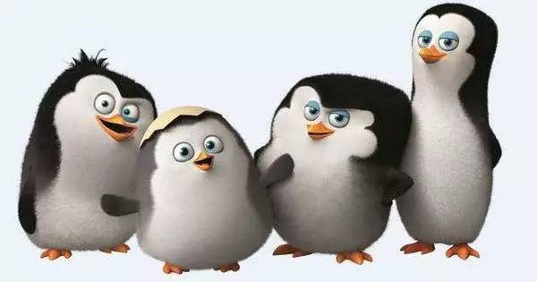 kowalski, rico, private, watch, hd, best animation movies of