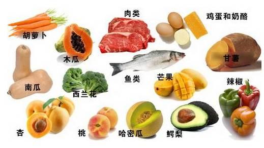 含有丰富维生素b的食物