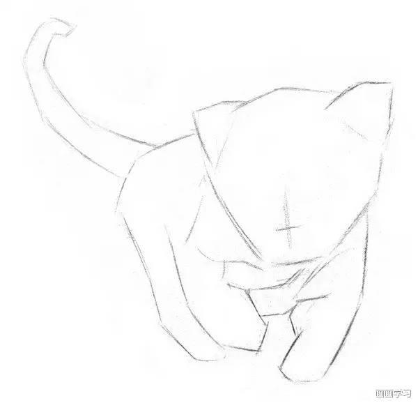 【素描教程】教你画蠢萌蠢萌的小动物