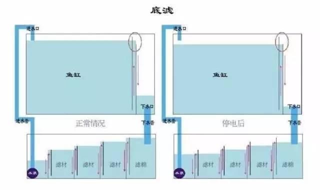 一米海水缸底滤设计图