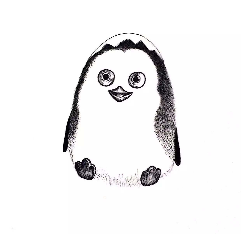 针管笔动物教程 | 用一支笔画一只可爱小企鹅 (小进画