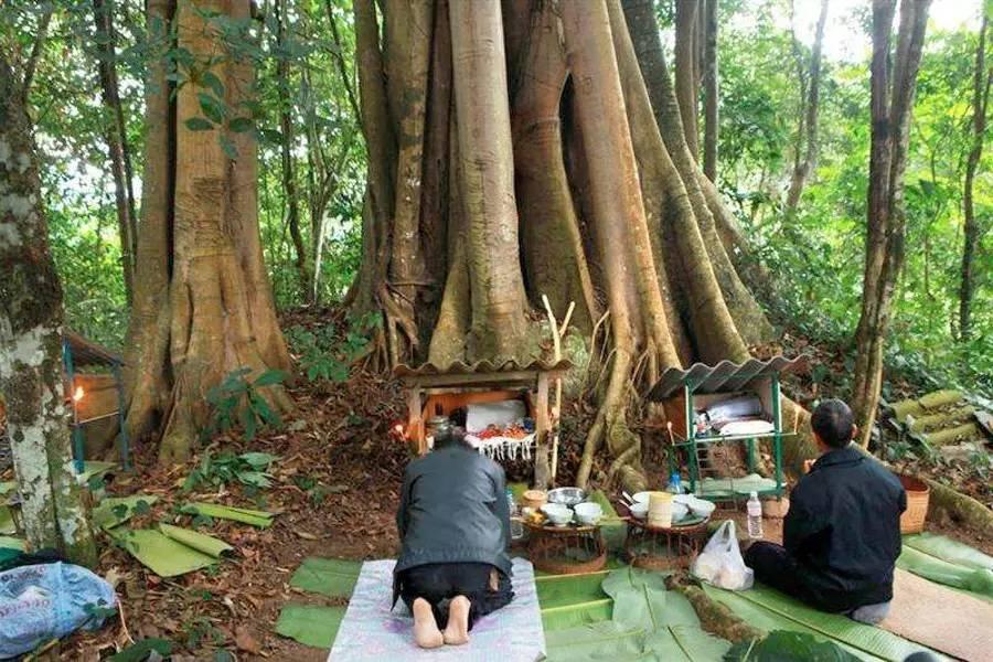 原始宗教与上座部佛教在傣族社会...