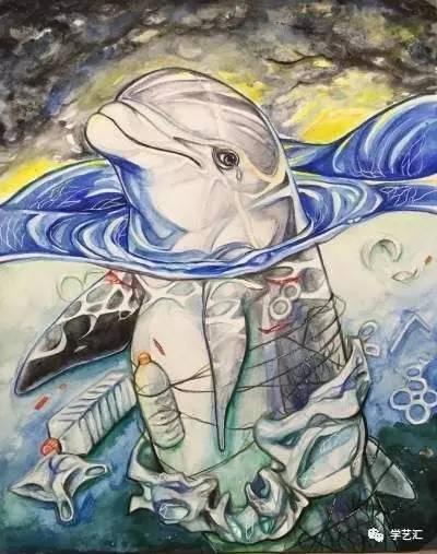 保护海洋环境及海洋动物也刻不容缓!