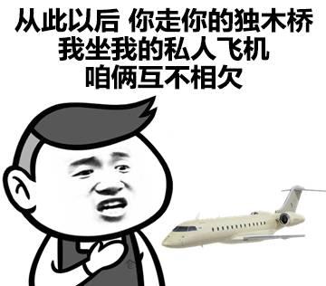 表情包:从此以后,你走你的独木桥,我坐我的私人飞机图片