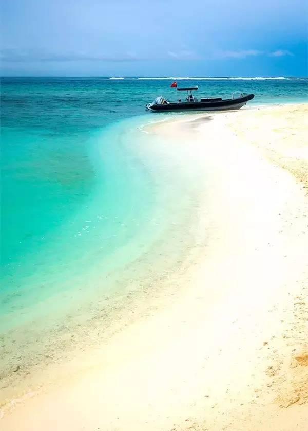 人体艺术小岛南_旅游 正文  全富岛 几乎是西沙海域最美的小岛 全富岛附近的海域是