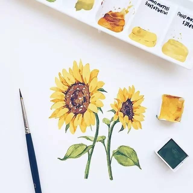 可爱向日葵简笔画水彩