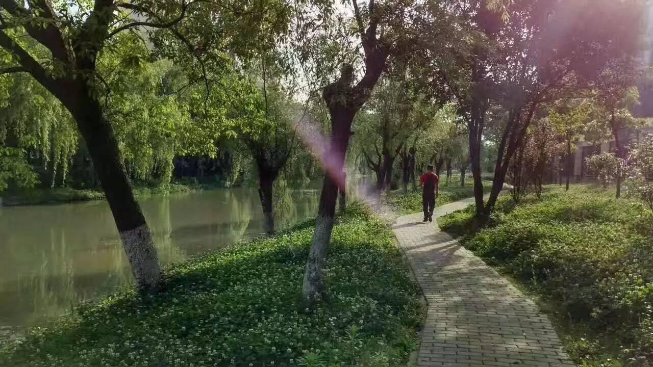 被遗忘的沙埔河(组图)-新闻频道-手机搜狐
