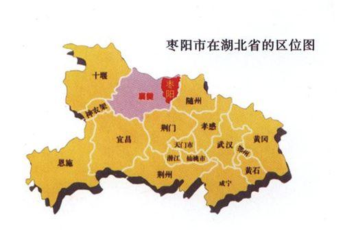 枣阳网站建设公司哪家售后服务好