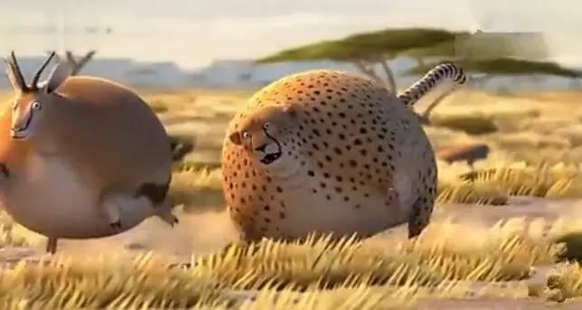 德国fmx动画制作了一部动画公益短片《rollingwild》。片中所有的动物都变成了圆滚滚的胖纸。话说真的好呆萌~~ 来源:一晚麦片 公众号:maizi-video 每一只都好像要上天的氢气球,会发生什么样的事情呢?