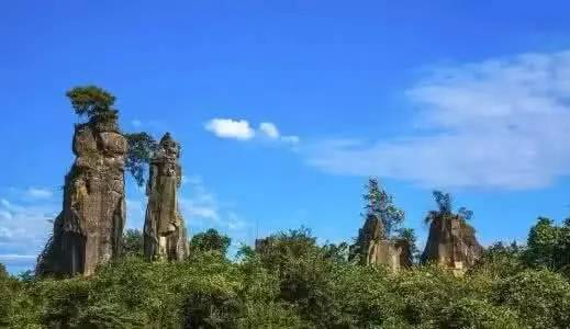 四川省唱歌石林旅游开发有限公司申报的唱歌乡森林康养基地,以丰富的