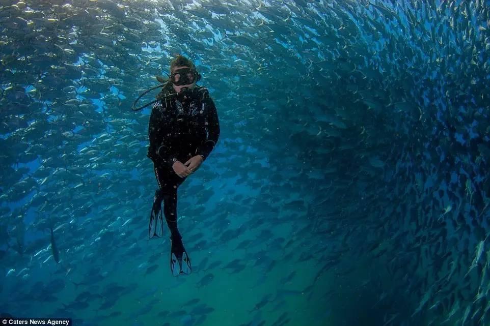 夫妻愹�.{�_和爱人在水下看一场超级鱼卷风吧!_搜狐旅游_搜狐网
