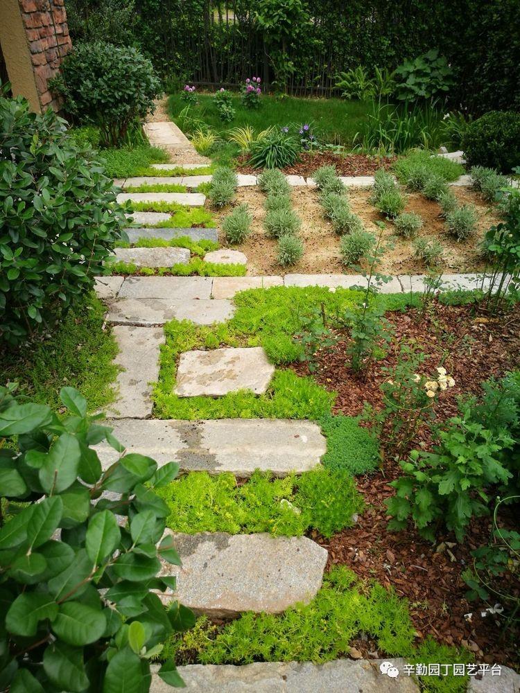 前院花园设计效果图