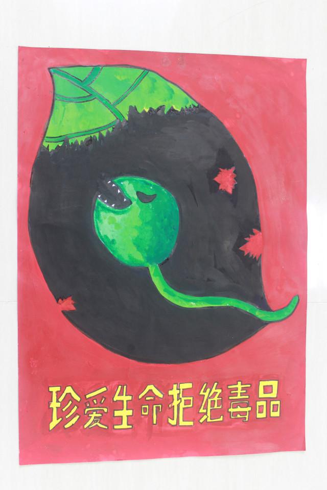 阳江市校园禁毒海报比赛(小学组)投票活动开始啦!