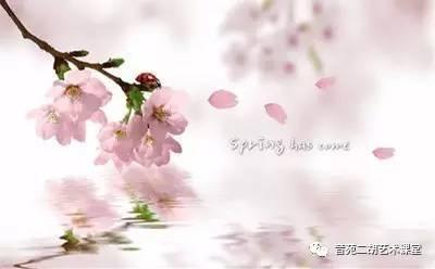 二胡音画欣赏 三月桃花雨