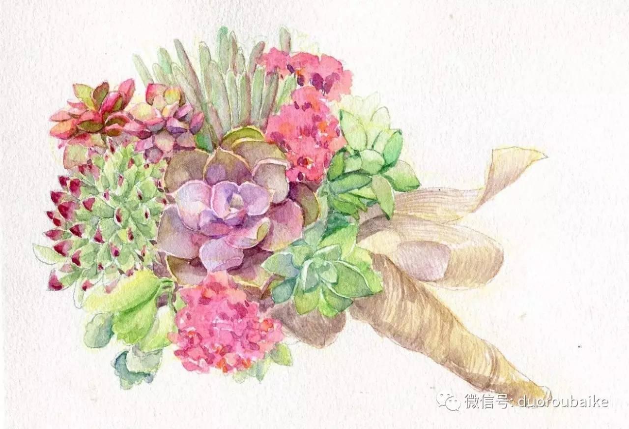 一支鲜花图片手绘