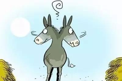 一头去上班的驴!老板和员工都该看看。