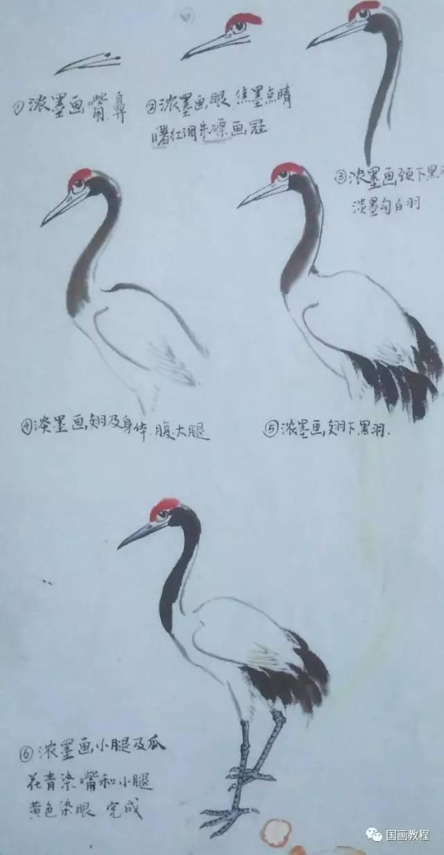 【国画教程】30天基础综合课,零基础学画画