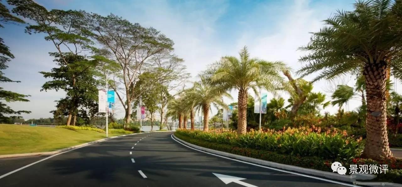 详解| 城市道路景观绿地设计
