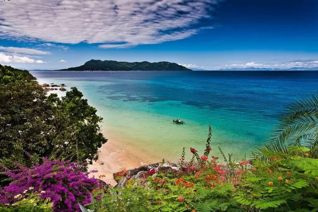 马达加斯加奇幻之旅,比疯狂动物城还「疯狂」