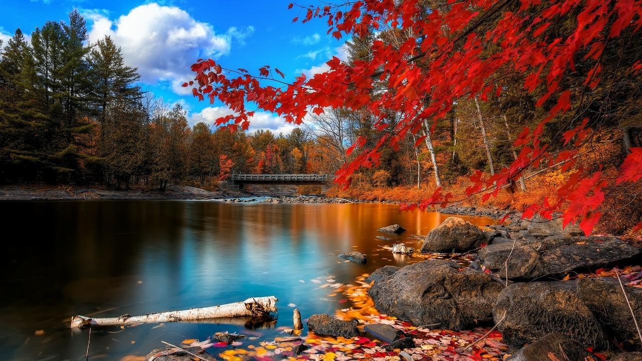 【西塘国旅】一定要去 加拿大最令人叹为观止的自然奇观图片