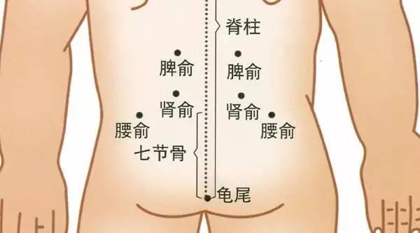 可能会比较熟悉,通常拔罐,刮痧最多的地方就在背部,因为后背是膀胱经