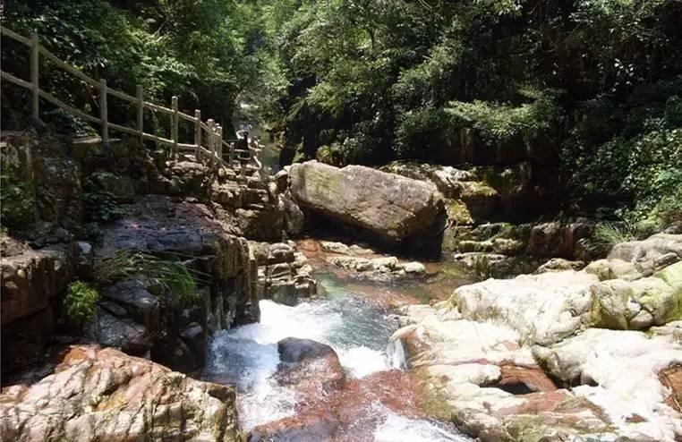 广西龙潭国家森林公园实景图二